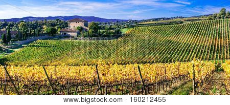 Pictorial Tuscany countryside with vineyards. Italy, Chianti region of Italy