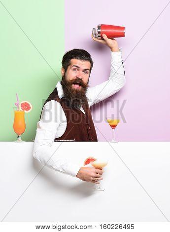 Funny Handsome Bearded Barman