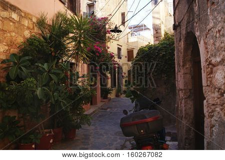 small street in a town in southern europe full with flowers colorful in the top sunny down in the shadow