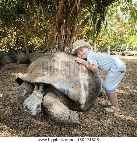 Child huggging Aldabra giant tortoise. Mauritius