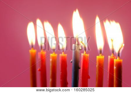 Hanukkah burning candles on the pink background