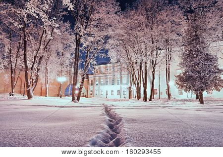 Winter landscape - city winter park covered with winter snow in the winter night. Winter night scene of snowy night park. Colorful winter snowy scene with Christmas mood