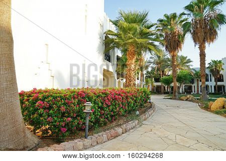 Path in the beautiful garden of a luxury hotel