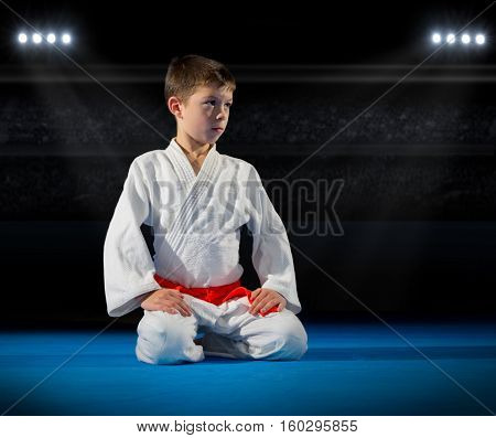 Little boy martial arts fighter in sports hall