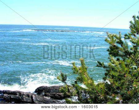 Beautiful Coastal Maine