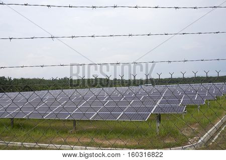 restricted area, solar panel plant protected with  fence