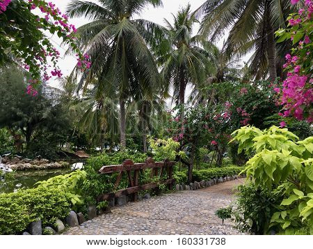 beautiful tropical Park and a lot of plants, tall palm trees, flowering trees, pink flowers, stone paths, a small pond with greenish water