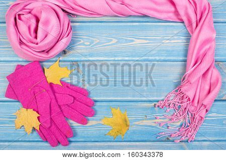 Frame Of Gloves And Shawl For Woman, Clothing For Autumn Or Winter, Copy Space For Text