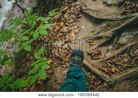 tourist shoe on the foot of the forest