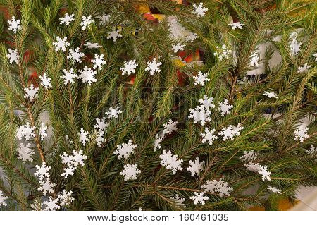 Christmas festive decoration of fir branches snowflakes. Christmas and New Year's background.