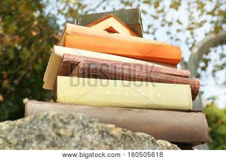 Pile of books on stone in a park