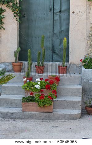 Mediterranean motif stone staircase with flower pots and cacti
