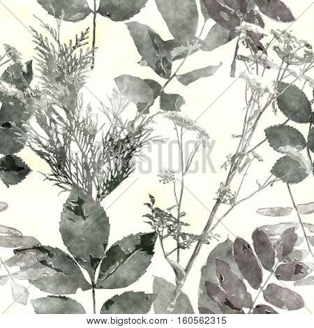 art vintage watercolor floral seamless pattern with monochrome black leaves and grasses on white background