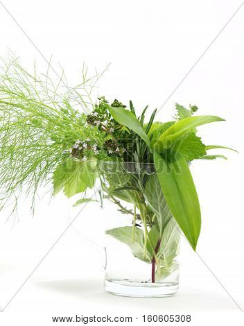 Fresh green herbs in glass on white background