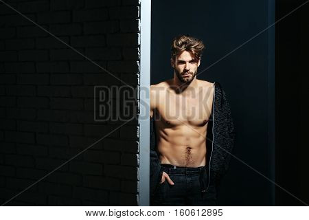 young handsome bearded sexy macho man with long beard and stylish hair in jacket and pants with muscular bare torso in studio on black and brick wall background copy space