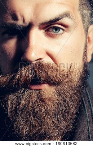Frown serious bearded man with beard moustache and gray hair stylish hipster male closeup