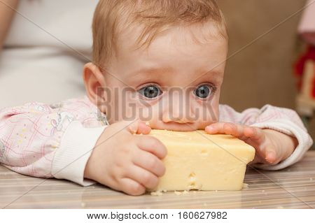 Baby Liked A Piece Of Tasty Cheese