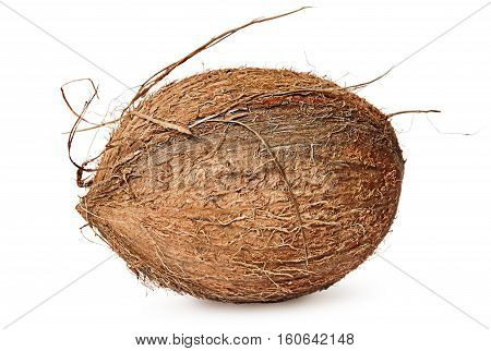 Entirely rotated coconut isolated on white background