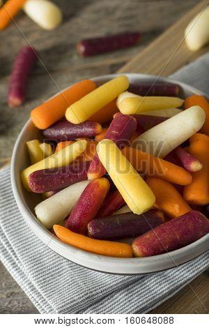Raw Organic Rainbow Baby Carrots