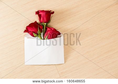 Beautiful roses in envelope on yellow background.