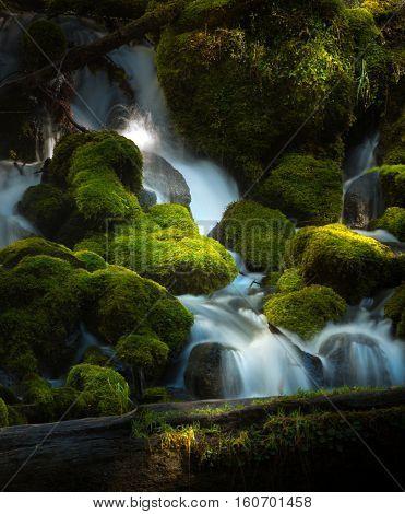 Water Cascade Clearwater Creek Umpqua National Forest
