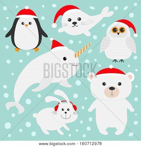 Arctic polar animal set in red Santa hat. White bear owl penguin Seal pup baby harp hare rabbit narwhal unicorn-fish. Kids Christmas cards Blue background Snow flake Flat design Vector illustration