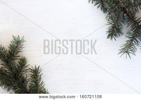 nature spruce branches on a light wood surface top view / winter holiday decoration