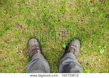 Male Feet In Leather Shoes On Grass