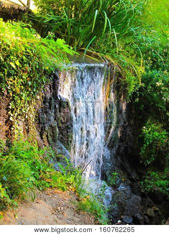 Nice small waterfall in  the green forest