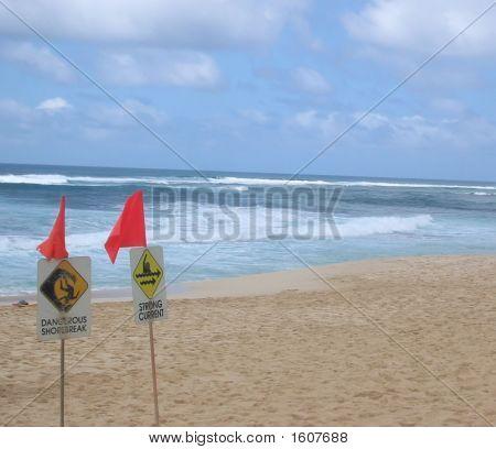 North Shore Hazards