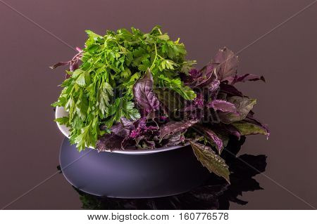 Fresh Parsley And Purple Basil On A Black Reflective Table