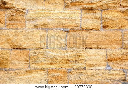 Shell Rock Wall Background