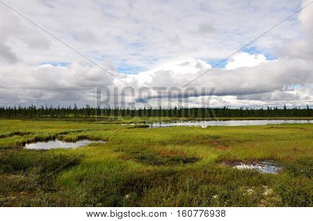 There is lake in the green meadow. There are many white clouds in the dark blue sky