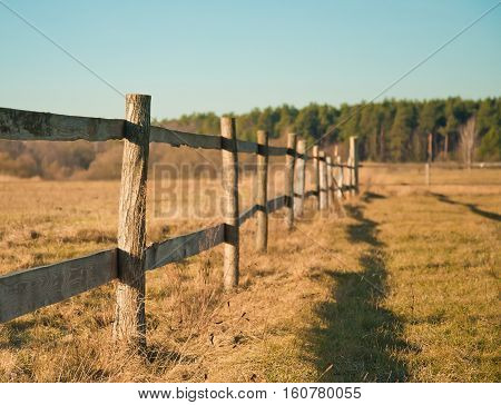 village landscape wooden fence spring. meadow field