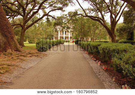 sugar plantation on Mississippi river New Orleans