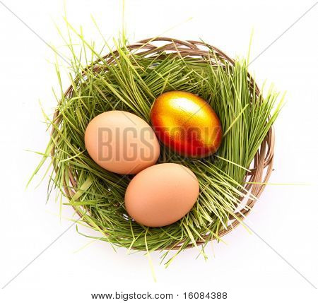 Gold  egg in nest isolated on white