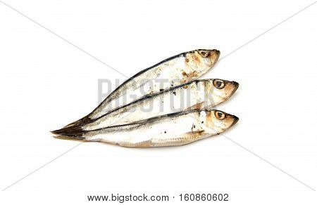 European salted anchovies isolated on white background