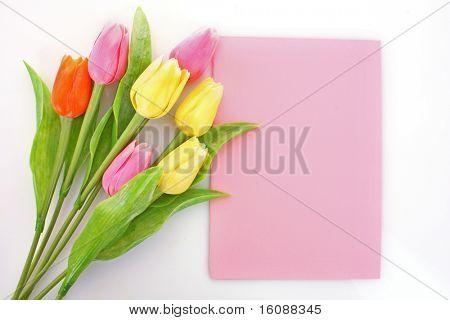 Strauß Tulpen und Postkarte auf weiß