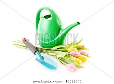 Bailer with flower and shovel isolated on white