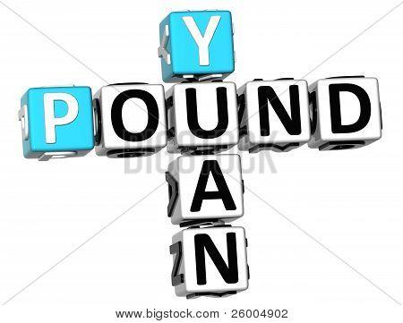 3D Yuan Pound Crossword