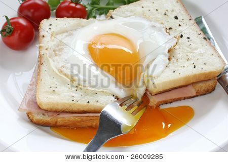 croque madame , french hot ham and cheese sandwich with fried egg