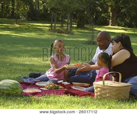 Bi-racial Family Enjoying a Picnic in the Park