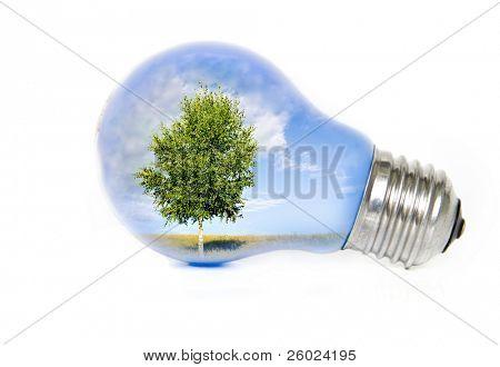 Paisaje de verano con el árbol en la bombilla que simboliza la energía verde