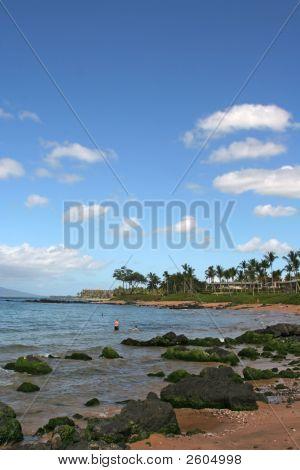 Ulua Bay For Snorkeling