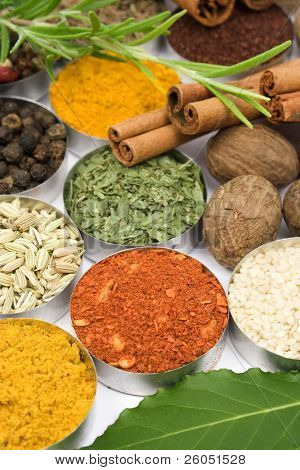 Colorful spices used in indian and international cuisine