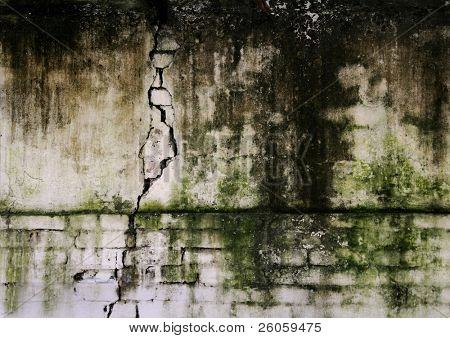 old moldy brick wall
