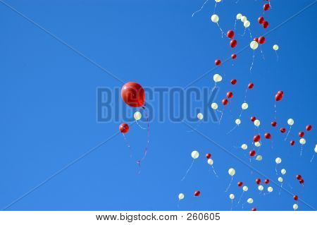 Balloons Rising In The Sky