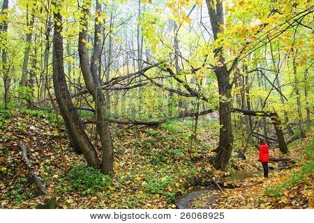 Autumn and lonely girl in red raincoat