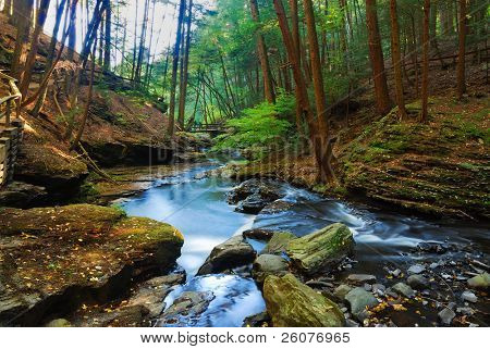 Autumn River in forest with foliage and rocks.