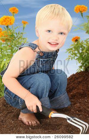 Adorável menino criança 2 anos de idade com cabelos loiros, trabalhando em um jardim de calêndula.